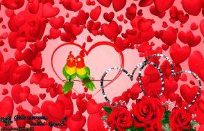 Meilės fiesta