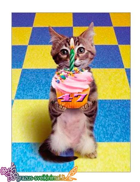 47-gimtadienis