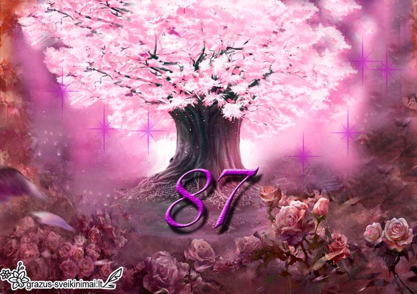 87-gimtadienis