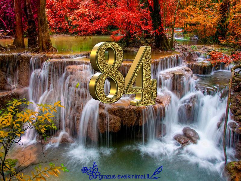 su-84-gimtadieniu
