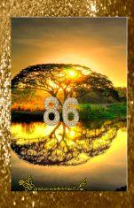 Su 86 gimtadieniu