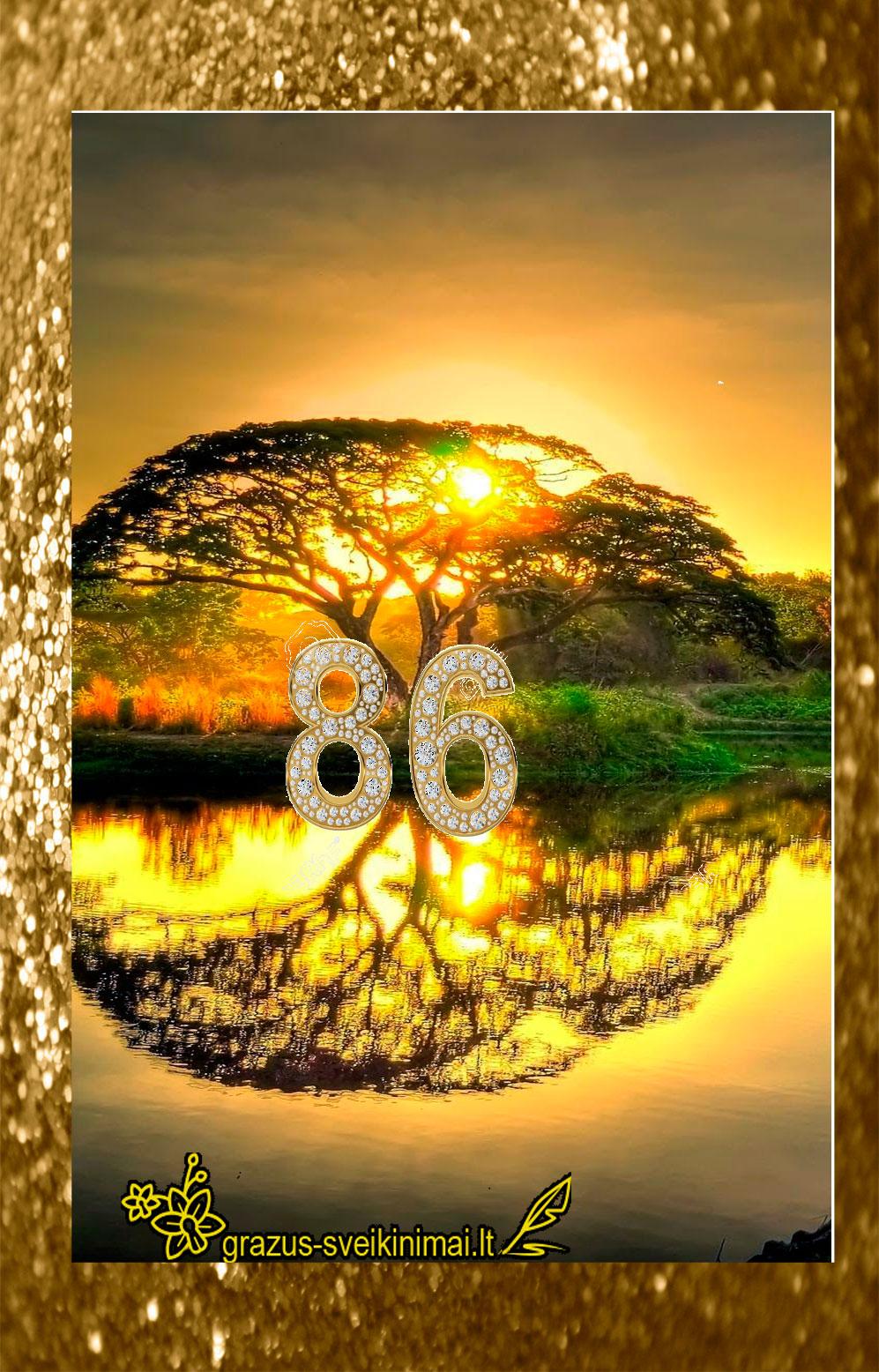 su-86-gimtadieniu