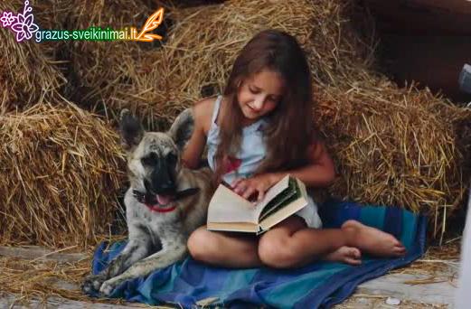 Vaikiškos knygos dienai atvirukas