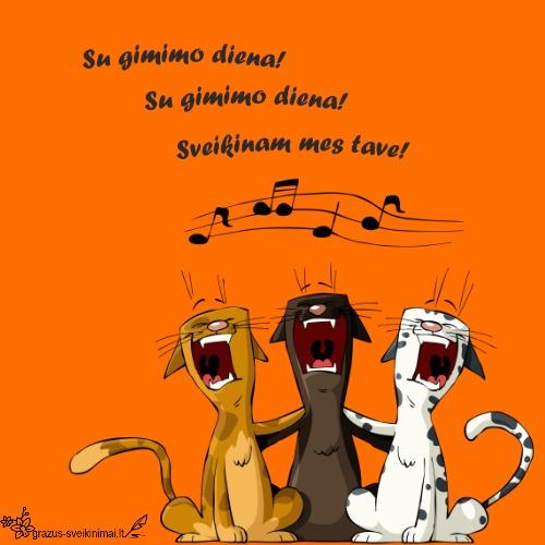 Skiriu tau dainą gimimo dienai!