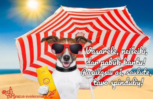 Skubėkime pasidžiaugti besibaigiančia vasara!