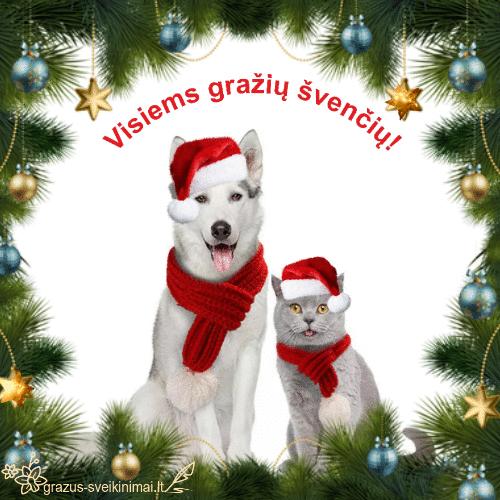Gražių švenčių!